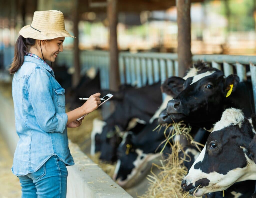 stagiaire avec élevage